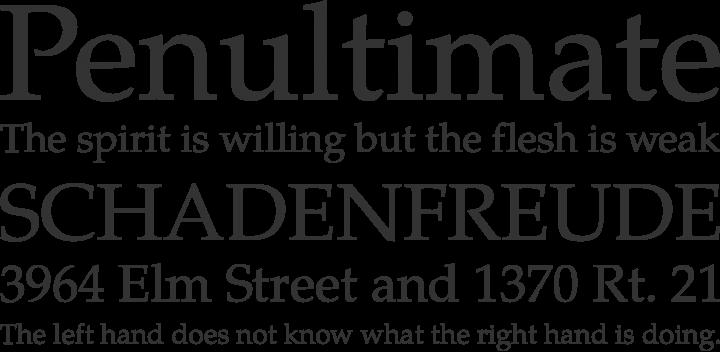 TeX Gyre Pagella Font Phrases