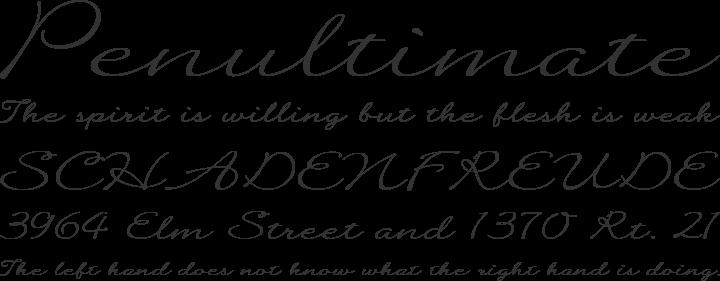 Quilline Script Thin Font Phrases