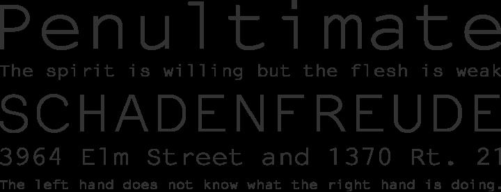 NotCourierSans Font Phrases