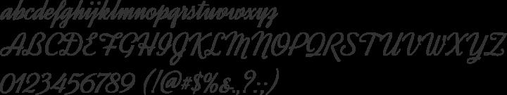 Dynalight Font Specimen
