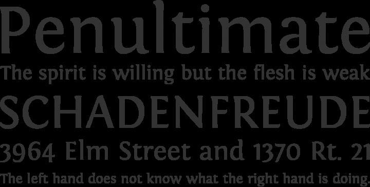 Fontin Font Phrases