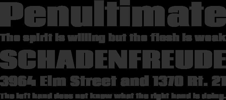 Coda Font Phrases