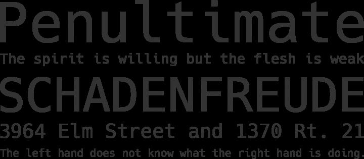 Hack Font Phrases