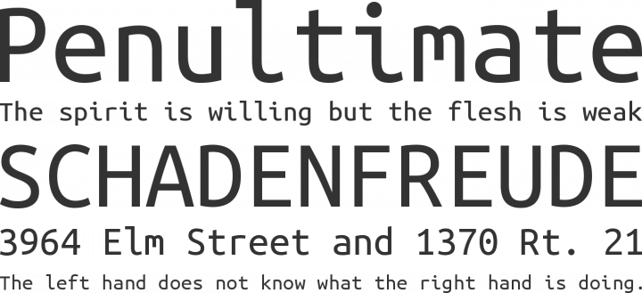 Ubuntu Mono Font Phrases