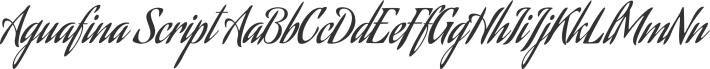 Aguafina Script font family by Sudtipos