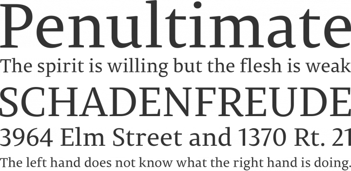 Permian Serif Font Phrases