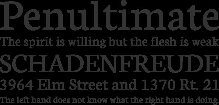Neuton Font Phrases