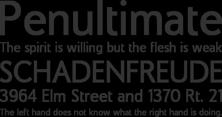 COM4t Sans Medium Font Phrases