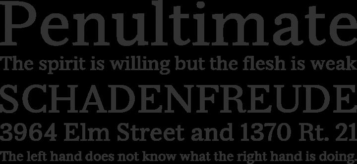 Serif Beta Font Phrases