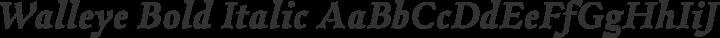Walleye Bold Italic free font